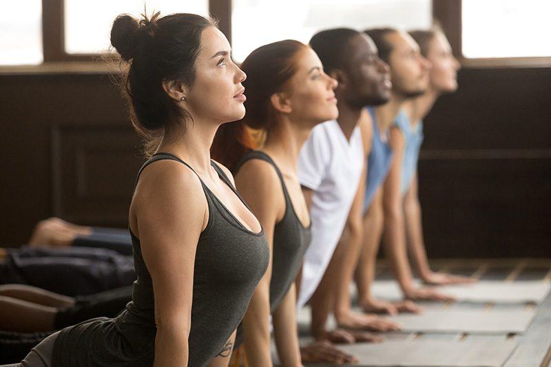 yogis practising yoga